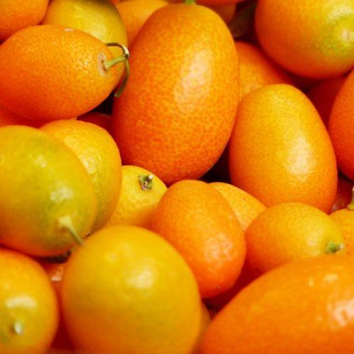 Kumquat Fragrance Oil