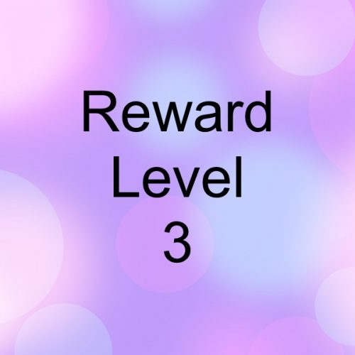 Reward Level-3
