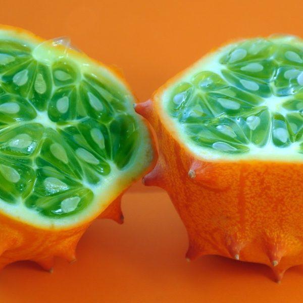 Cucumber Melon by BBW Type Fragrance Oil