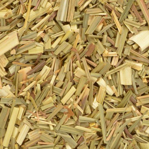 Lemongrass botanical
